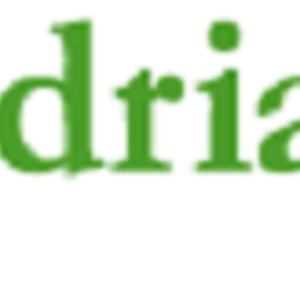 Logo-adriarent-new_1